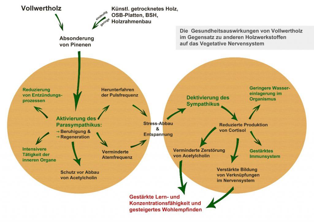 Gesundheitswirkung Holz