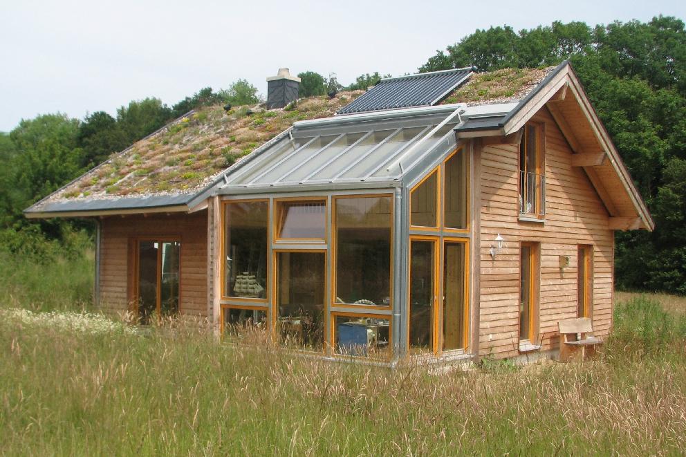 Holzhaus Dachbegrünung